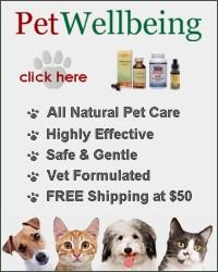 natural pet medicine