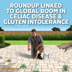 glyphosate in food
