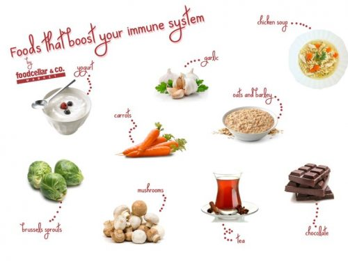 foods for the immune system