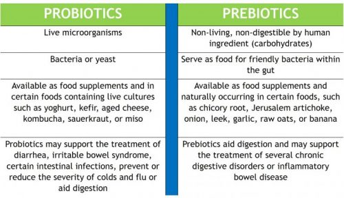 probiotics and prebiotics supplements
