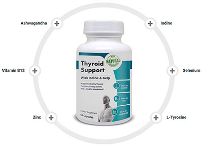 thyroid supplement