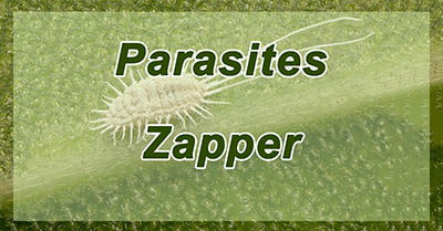 parasite zapper