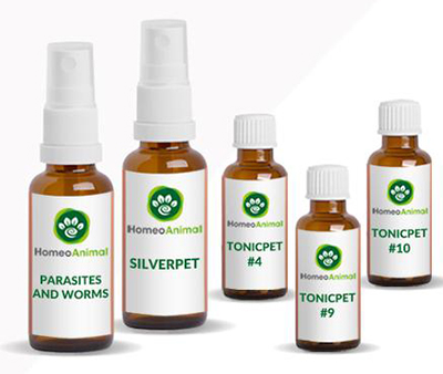 homeopathic parasite removal